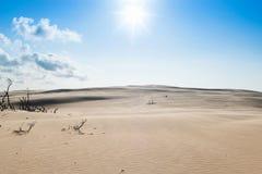 Calor en la duna de arena Fotografía de archivo libre de regalías