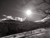 Calor glorioso em um inverno profundo e escuro fotografia de stock royalty free