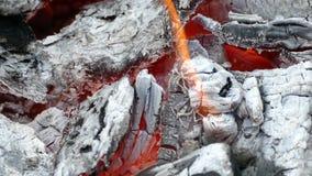 Calore nel fuoco stock footage