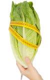 caloriasmat läker low Royaltyfri Bild