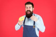Calorie. Chef feel hunger. Calorie counting. Diet and health. gain calorie. Bearded man in chef apron. Chef man in cafe. Food calorie. baker eat donut. Funny royalty free stock photos