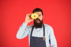 Calorie. Chef feel hunger. Calorie counting. Diet and healthy food. gain calorie. Bearded man in chef apron. Chef man in. Cafe. Food calorie. baker hold donut royalty free stock images