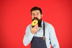 Calorie. Chef feel hunger. Calorie counting. Diet and healthy food. gain calorie. Bearded man in chef apron. Chef man in. Cafe. Food calorie. baker hold donut stock photos