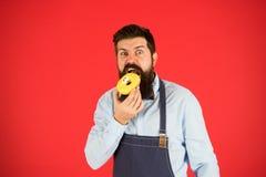 calorie De chef-kok voelt honger Calorie het tellen Dieet en gezond voedsel aanwinstencalorie Gebaarde mens in chef-kokschort Che stock foto's