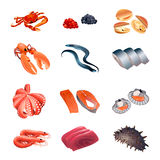Calorie table fish and seafood. Set of colorful isolated fish and seafood for calorie table illustration Stock Image