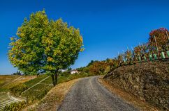 Calosso, province of Asti. Piedmont region, Italy. 15 October 2017 at 15:35. Among the areas of Monferrato and Langhe, the village of Calosso with the autumn Stock Image