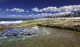 CALOUNDRA, AUS - 2016年8月13日:在Beach Calun国王的热的晴天 免版税库存照片