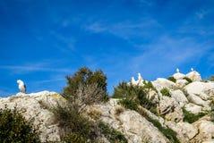Calp Penial difach, Valencia y Murcia, Spain Stock Images