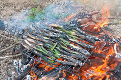 Calsots on the barbecue Royalty Free Stock Photo