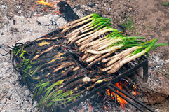 Calsots on the barbecue Royalty Free Stock Photography