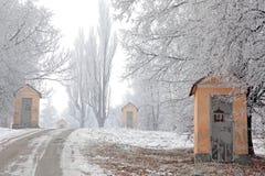 Calvaire et nature d'hiver Photographie stock