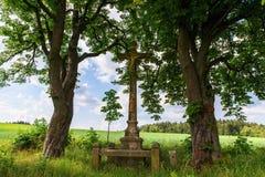 Calvary mellan träd i äng arkivbild