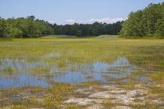 Calverton海岸平原池塘广角看法  库存照片