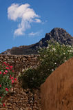 Calvi Street Scene. Colorful flowers growing on a wall in Calvi, on the coast of Corsica Royalty Free Stock Image