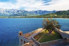 Calvi zatoka i korsykanina wybrzeża krajobraz widzieć od cytadeli zdjęcia royalty free