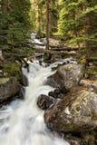 Calypso Cascades und ruhiger Wald lizenzfreie stockbilder