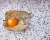 A calyx open, exposing the ripe fruit of physalis peruviana Stock Photos