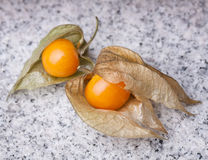 An calyx open, exposing the ripe fruit of physalis peruviana. On a slate of marble Royalty Free Stock Image