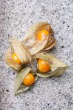 An calyx open, exposing the ripe fruit of physalis peruviana. On a white slate of marble Royalty Free Stock Image