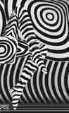 Calza della zebra Fotografia Stock Libera da Diritti