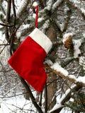 Calza di natale nella foresta di inverno Immagini Stock
