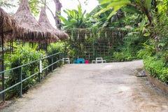 Calzada concreta en jardín tropical Imagen de archivo