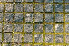 Calzada de las piedras de pavimentación viejas foto de archivo libre de regalías