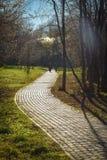 Calzada de las piedras de pavimentación en el parque fotografía de archivo