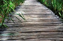 Calzada de madera del parque Imagenes de archivo