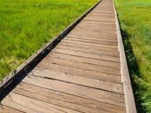 Calzada de madera entre fondo del campo de hierba verde Imagen de archivo libre de regalías