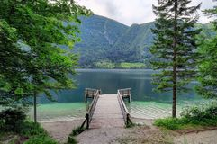 Calzada de madera que lleva al lago Bohinj en Eslovenia Fotos de archivo libres de regalías