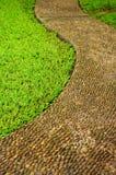 Calzada de piedra agradable con el fondo del prado Imagenes de archivo
