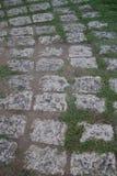 Calzada de piedra en el fuerte San Pedro, Cebú, Filipinas imagen de archivo