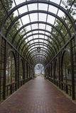 Calzada debajo de un túnel romántico Imágenes de archivo libres de regalías