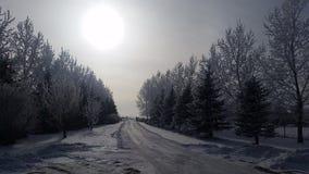 Calzada del invierno Foto de archivo libre de regalías