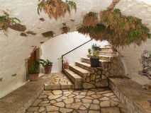 Calzada del pavimento del arco con las plantas verdes que crecen arriba imagenes de archivo