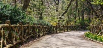 Calzada en Central Park Fotografía de archivo