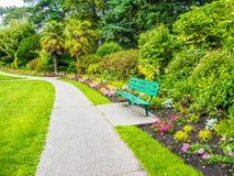 Calzada en el parque del verano Imagenes de archivo