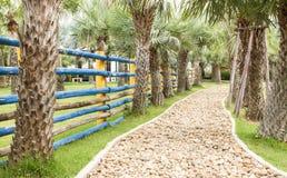 Calzada en jardín El camino en el jardín Imagen de archivo libre de regalías