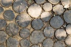 Calzada en un parque hecho de cortar troncos de árbol imagen de archivo