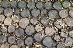Calzada en un parque hecho de cortar troncos de árbol Imagenes de archivo