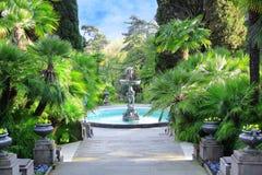Calzada en un parque hermoso con las palmas Imagenes de archivo