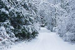 Calzada nevada Foto de archivo