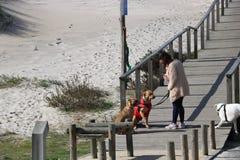 Calzada que lleva a la playa - Portugal Imagenes de archivo