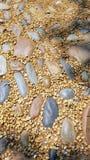 Calzada y camino de la piedra del guijarro en sombra y luz del sol fotografía de archivo