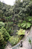 Calzadas de Monte Palace Green Tropical Gardens Fotos de archivo libres de regalías