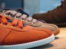 calzatura Immagini Stock