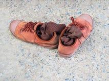 Calzini di Brown e scarpe marroni del ` s dello studente Immagini Stock Libere da Diritti