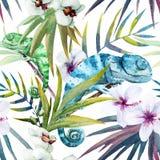 Caméléon de reptiles de modèle de vecteur d'aquarelle illustration de vecteur