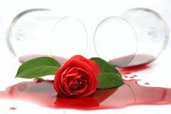 Camélia vermelha no vinho derramado Fotos de Stock